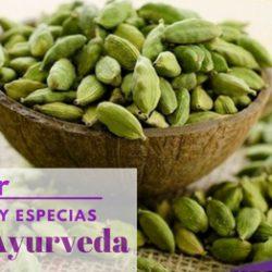 Charla: Uso de Hierbas y Especias en Ayurveda