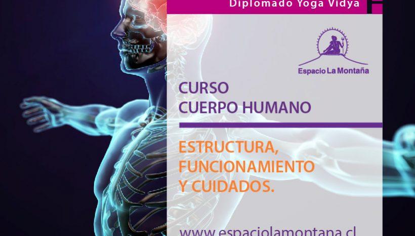 CURSO Cuerpo Humano:  «Estructura, Funcionamiento  y Cuidados»