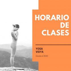 Horarios y Valores Yoga Vidya