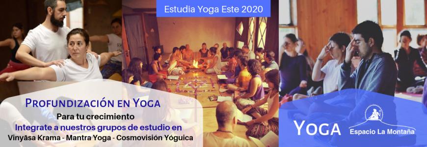 Yoga Vidya 2020